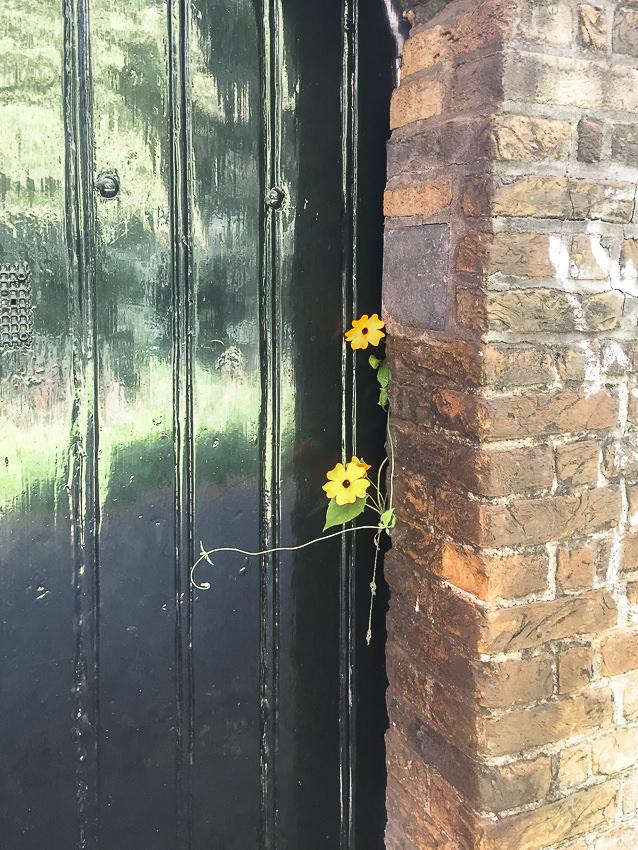 deur en bloemetjes