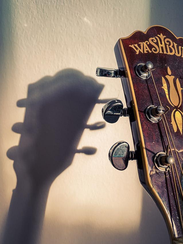 Washburn gitaar #3