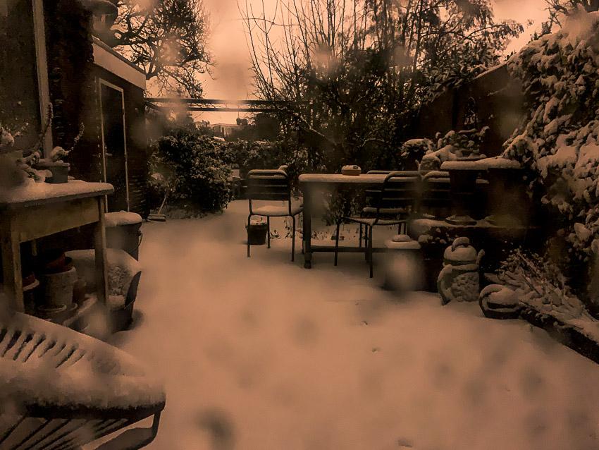 besneeuwde tuin in de nacht