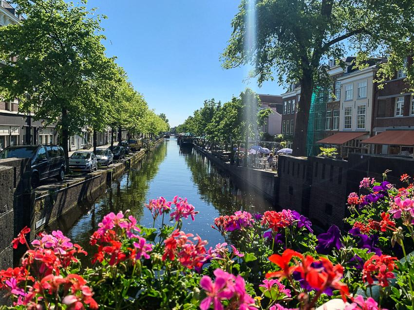 Groenewegje, Den Haag #3